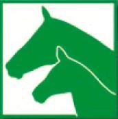 Logo FN Pferdezucht
